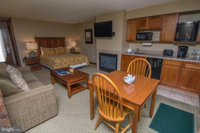 565 Glendale Rd. #216, OAKLAND, MD 21550 (#MDGA133506) :: Fairfax Realty of Tysons