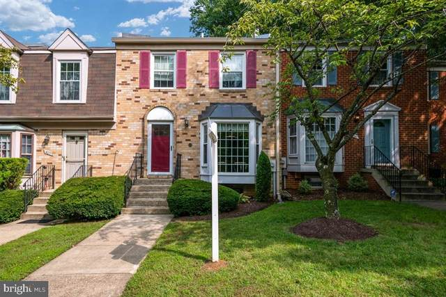 403 Bay Dale Drive, ARNOLD, MD 21012 (#MDAA445806) :: Advon Group