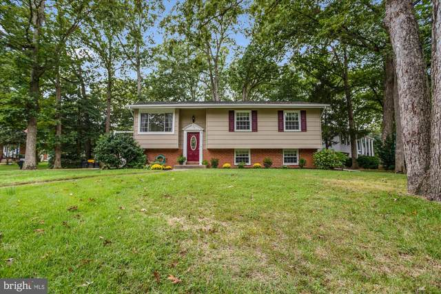 519 Brentwood Avenue, SEVERNA PARK, MD 21146 (#MDAA445976) :: ExecuHome Realty