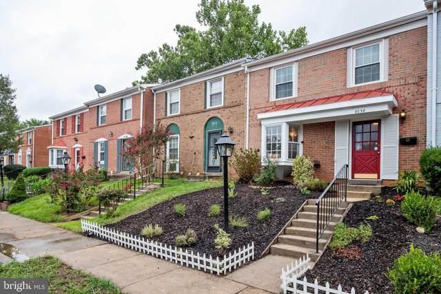 8038 Saint Annes Court, ALEXANDRIA, VA 22309 (#VAFX1153968) :: Debbie Dogrul Associates - Long and Foster Real Estate