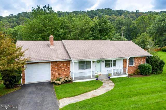 23268 Meetinghouse Lane, ALDIE, VA 20105 (#VALO420930) :: Pearson Smith Realty