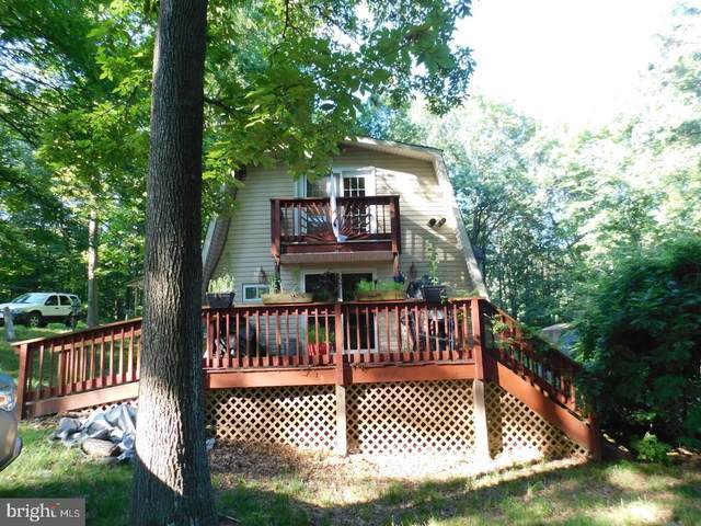 297 Deer Run Road, GORE, VA 22637 (#VAFV159680) :: Debbie Dogrul Associates - Long and Foster Real Estate