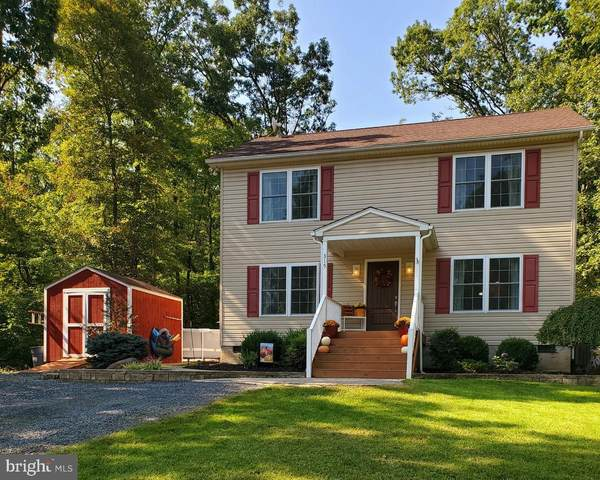 315 Winchester Drive, WINCHESTER, VA 22602 (#VAFV159682) :: Debbie Dogrul Associates - Long and Foster Real Estate