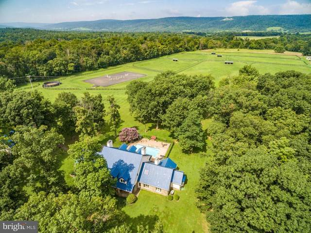 20022 Trappe Road, BLUEMONT, VA 20135 (#VALO420970) :: Peter Knapp Realty Group