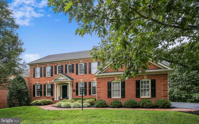 18419 Kingsmill Street, LEESBURG, VA 20176 (#VALO421038) :: The Licata Group/Keller Williams Realty