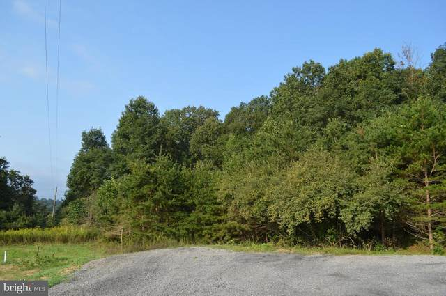 Amulet Way, BERKELEY SPRINGS, WV 25411 (#WVMO117388) :: AJ Team Realty