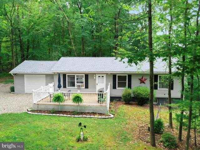 171-172 Totem Drive, AUBURN, PA 17922 (#PASK132360) :: TeamPete Realty Services, Inc