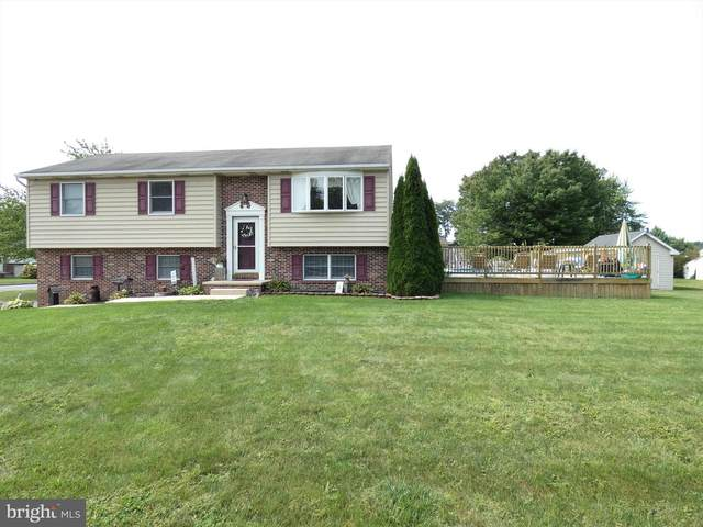 2 Cranfield Court, ELIZABETHTOWN, PA 17022 (#PALA169956) :: The Craig Hartranft Team, Berkshire Hathaway Homesale Realty
