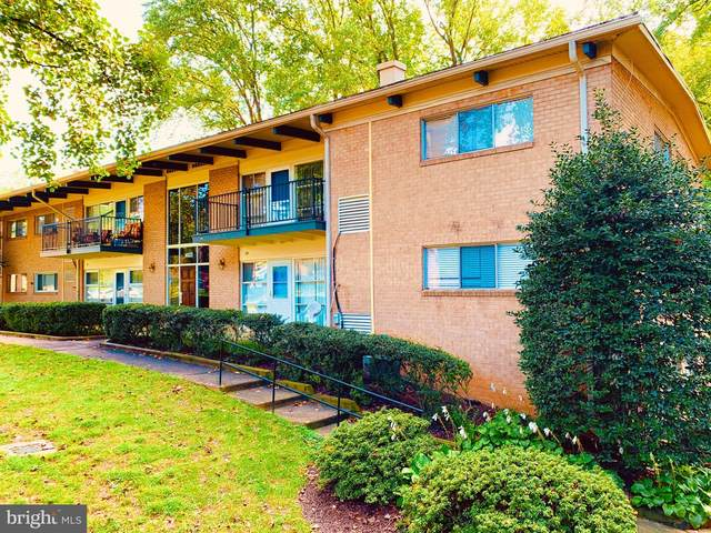 4923 Americana Drive #107, ANNANDALE, VA 22003 (#VAFX1154458) :: Debbie Dogrul Associates - Long and Foster Real Estate