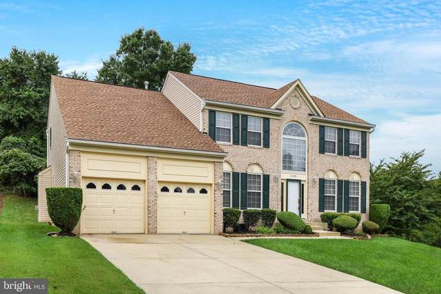 1105 Horizon View Place, ACCOKEEK, MD 20607 (#MDPG580892) :: Pearson Smith Realty