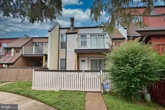 3804 El Camino Place #5, ALEXANDRIA, VA 22309 (#VAFX1154518) :: The Riffle Group of Keller Williams Select Realtors