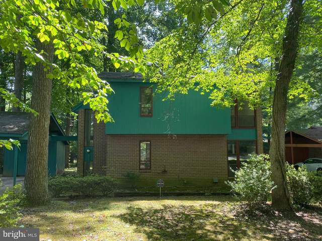 5231 Thunder Hill Road, COLUMBIA, MD 21045 (#MDHW285126) :: AJ Team Realty