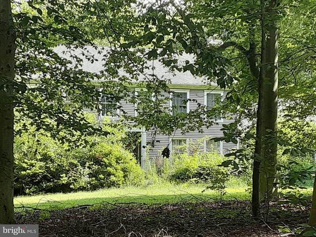 11 Ginger Road, CHESTERFIELD, NJ 08515 (#NJBL381568) :: Holloway Real Estate Group
