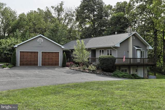 906 Clifton Heights Road, HUMMELSTOWN, PA 17036 (#PADA125658) :: The Joy Daniels Real Estate Group