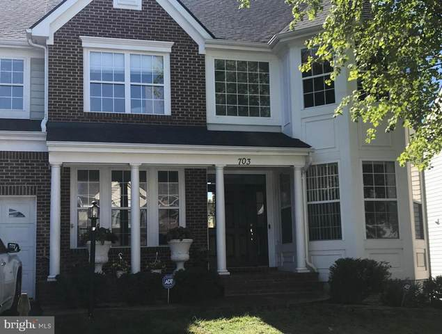 703 Vermillion Drive NE, LEESBURG, VA 20176 (#VALO421184) :: Debbie Dogrul Associates - Long and Foster Real Estate