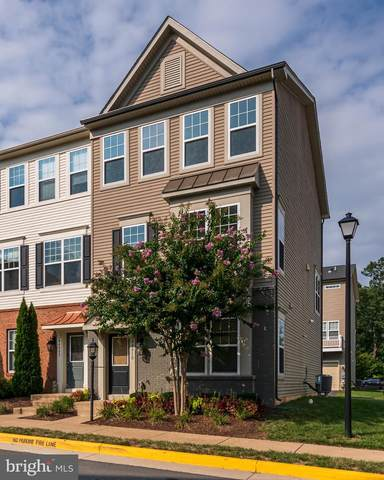 44010 Etna Terrace, CHANTILLY, VA 20152 (#VALO421204) :: Debbie Dogrul Associates - Long and Foster Real Estate