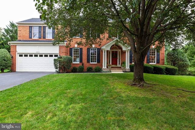 20832 Mintwood Court, ASHBURN, VA 20147 (#VALO421214) :: Colgan Real Estate