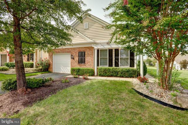 44406 Sunset Maple Drive, ASHBURN, VA 20147 (#VALO421228) :: Debbie Dogrul Associates - Long and Foster Real Estate