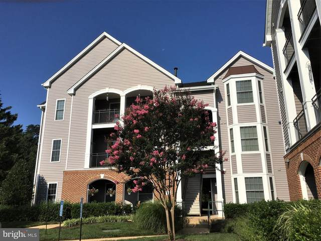 20447 Chesapeake Square #200, STERLING, VA 20165 (#VALO421246) :: Debbie Dogrul Associates - Long and Foster Real Estate
