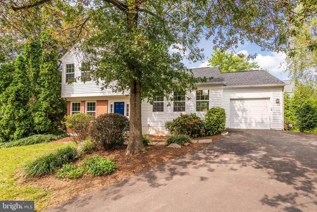 52 Mcpherson Circle, STERLING, VA 20165 (#VALO421284) :: Debbie Dogrul Associates - Long and Foster Real Estate