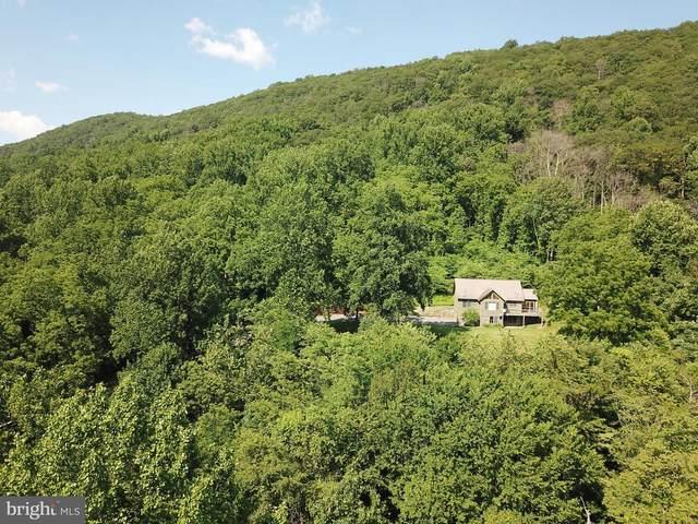 38 and 50 Black Bear Trail, WASHINGTON, VA 22747 (#VARP107552) :: Pearson Smith Realty