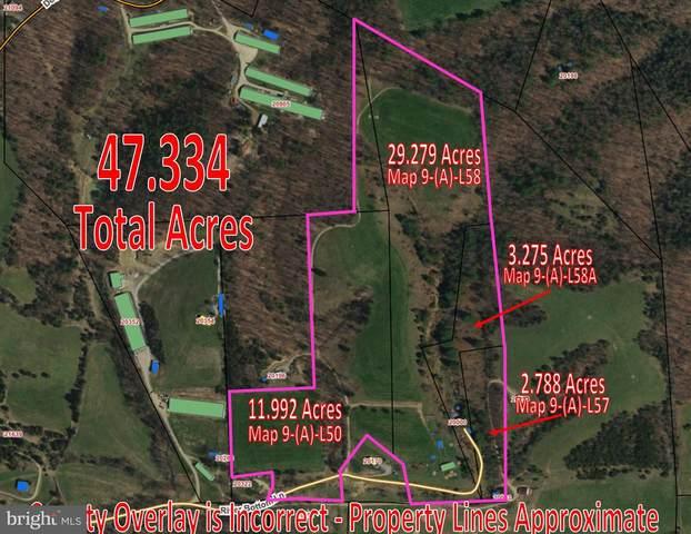 20000 River Bottom Lane, BERGTON, VA 22811 (#VARO101360) :: The Licata Group/Keller Williams Realty