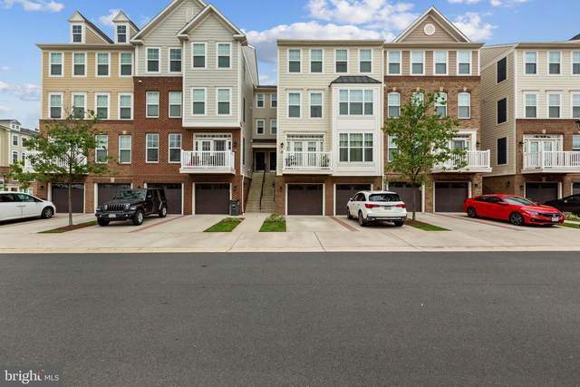 25217 Briargate Terrace, CHANTILLY, VA 20152 (#VALO421306) :: The Vashist Group
