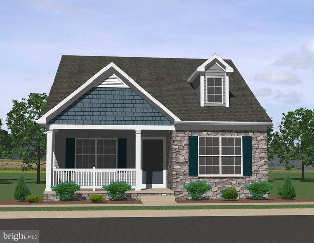 10 Pacific Boulevard #49, EPHRATA, PA 17522 (#PALA170072) :: The Joy Daniels Real Estate Group
