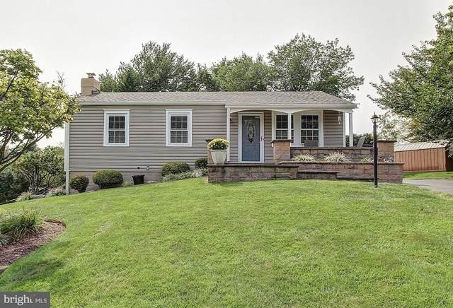 25120 Applecross Terrace, DAMASCUS, MD 20872 (#MDMC725650) :: Murray & Co. Real Estate