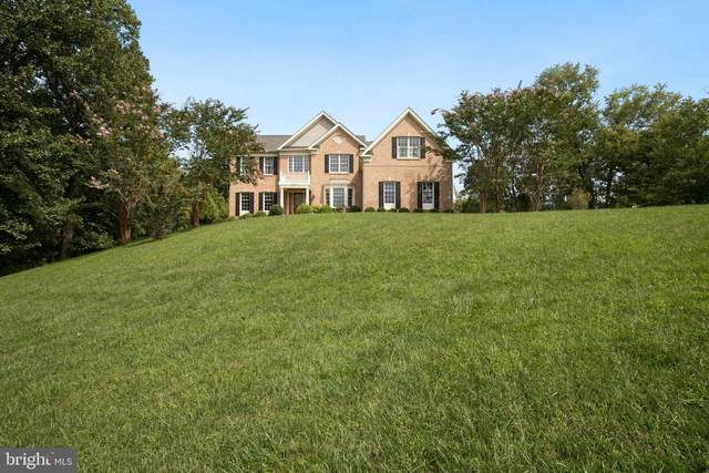 41278 Dutton Court, WATERFORD, VA 20197 (#VALO421338) :: The Denny Lee Team