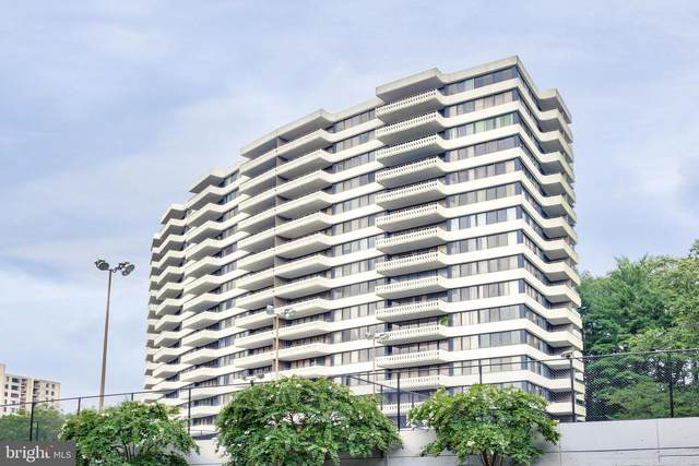 6301 Stevenson Avenue #213, ALEXANDRIA, VA 22304 (#VAAX250972) :: The Riffle Group of Keller Williams Select Realtors