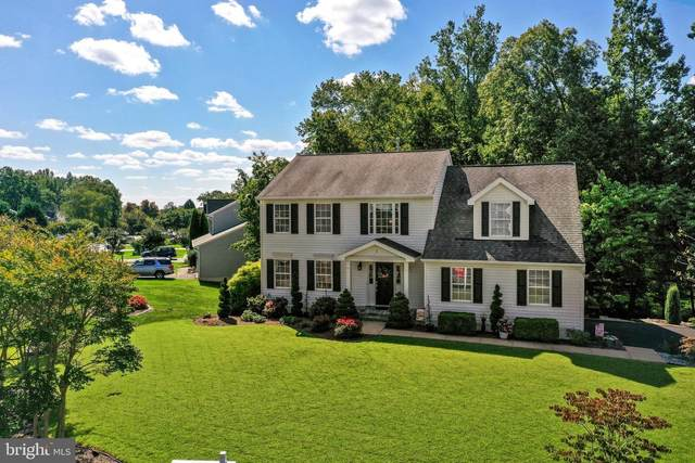 1 Lynchester Drive, FREDERICKSBURG, VA 22406 (#VAST225668) :: Debbie Dogrul Associates - Long and Foster Real Estate