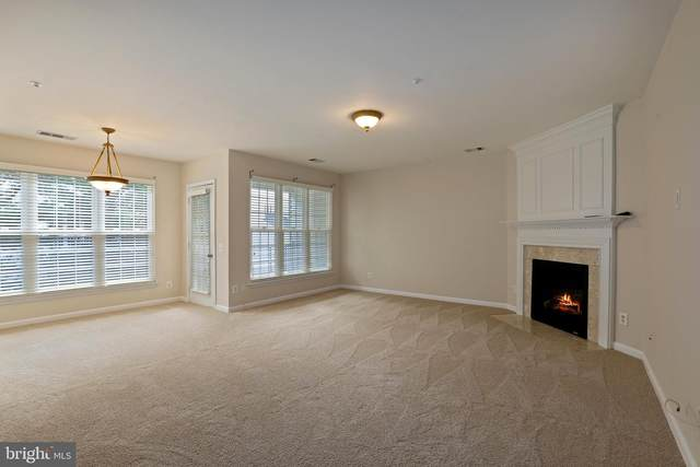 5935 Terrapin Place #303, ALEXANDRIA, VA 22310 (#VAFX1155326) :: Tom & Cindy and Associates