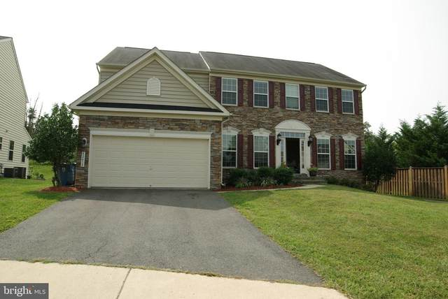 42415 Chamois Court, STERLING, VA 20166 (#VALO421406) :: Pearson Smith Realty