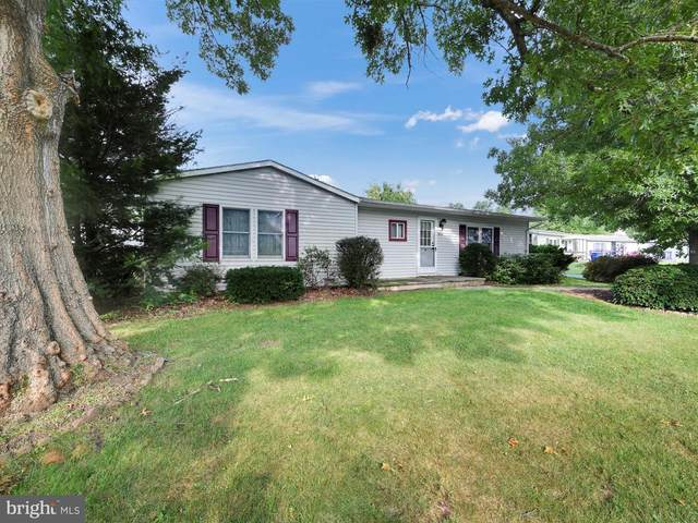15 Bill Drive, DENVER, PA 17517 (#PALA170160) :: TeamPete Realty Services, Inc