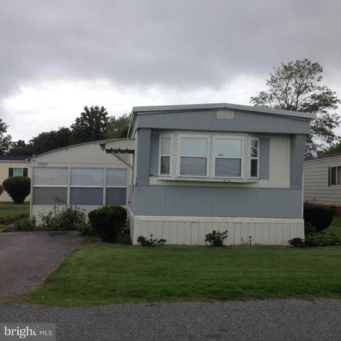17610 Mary Ann Drive, LEWES, DE 19958 (#DESU169172) :: The Rhonda Frick Team