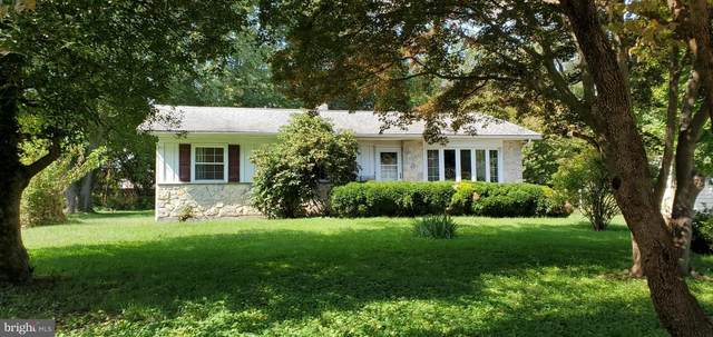 403 New Street, MIDDLETOWN, DE 19709 (#DENC509198) :: Linda Dale Real Estate Experts