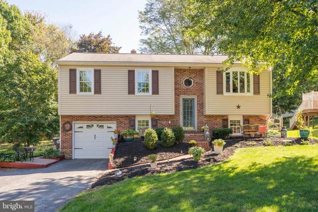 466 Donofrio Drive, DOWNINGTOWN, PA 19335 (#PACT516388) :: Linda Dale Real Estate Experts