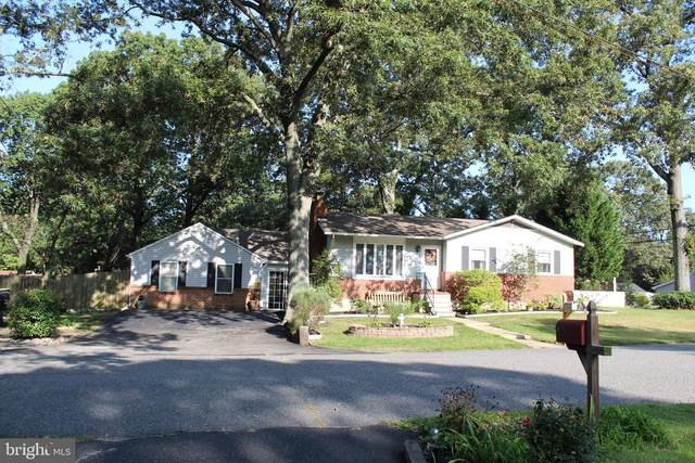 206 Pike Road, PASADENA, MD 21122 (#MDAA446750) :: Pearson Smith Realty