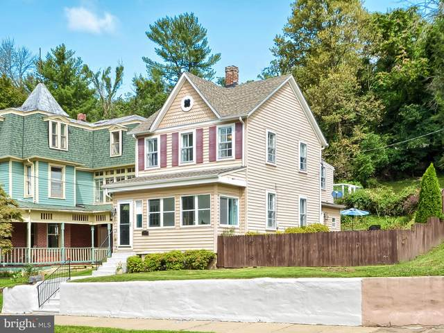 709 E Potomac Street, BRUNSWICK, MD 21716 (#MDFR270864) :: Larson Fine Properties
