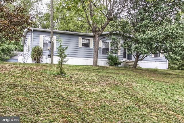 231 Gough Lane, NEWPORT, PA 17074 (#PAPY102634) :: The Joy Daniels Real Estate Group