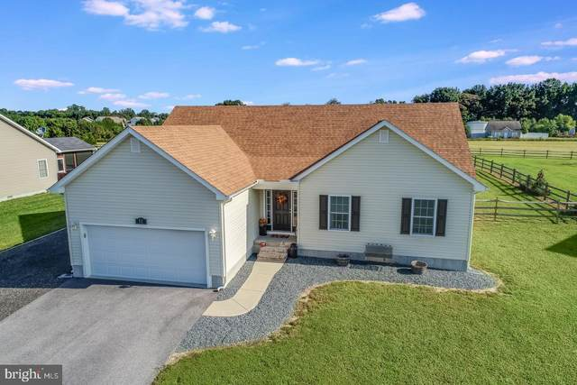 52 W Buck Point Road, CLAYTON, DE 19938 (#DEKT241946) :: Atlantic Shores Sotheby's International Realty