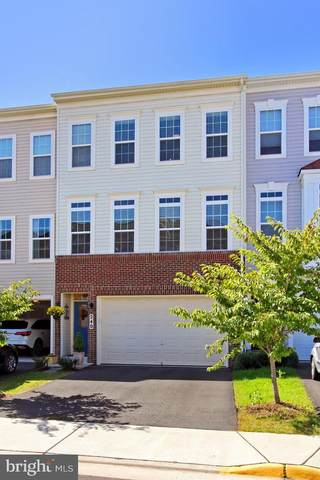 240 Upper Brook Terrace, PURCELLVILLE, VA 20132 (#VALO421518) :: Pearson Smith Realty