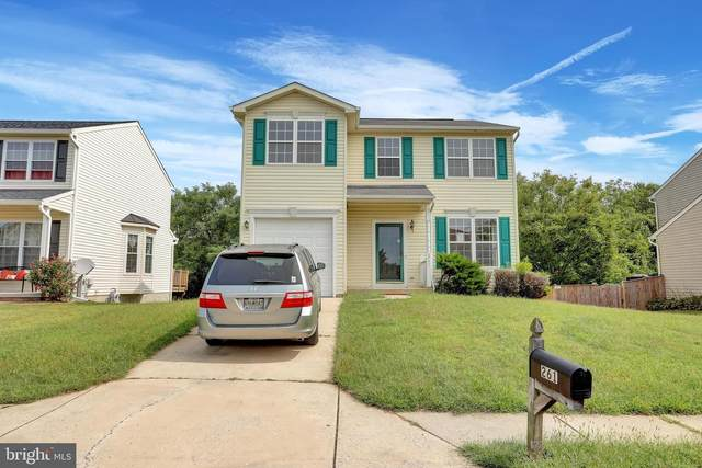 261 Montpelier Court, WESTMINSTER, MD 21157 (#MDCR199722) :: The MD Home Team