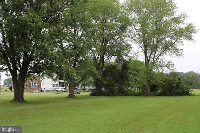 Skipton Lane, RAWLINGS, MD 21557 (#MDAL135248) :: The Redux Group