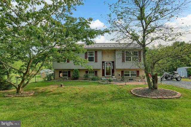 8867 Willowdale Road, GREENCASTLE, PA 17225 (#PAFL175304) :: The Joy Daniels Real Estate Group
