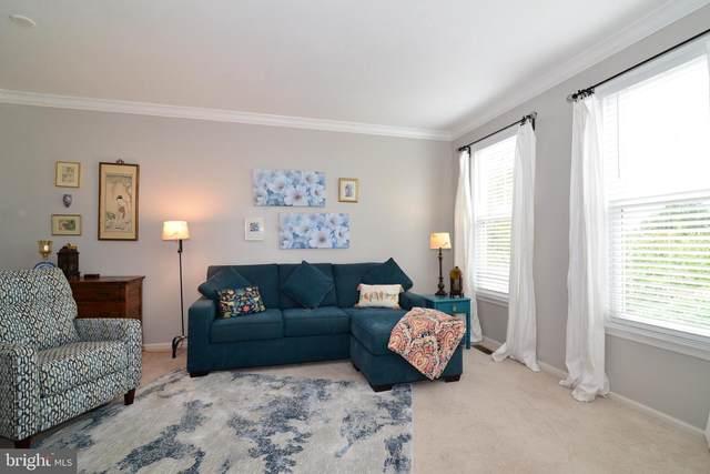 43162 Ivywood Terrace, BROADLANDS, VA 20148 (#VALO421568) :: Tom & Cindy and Associates