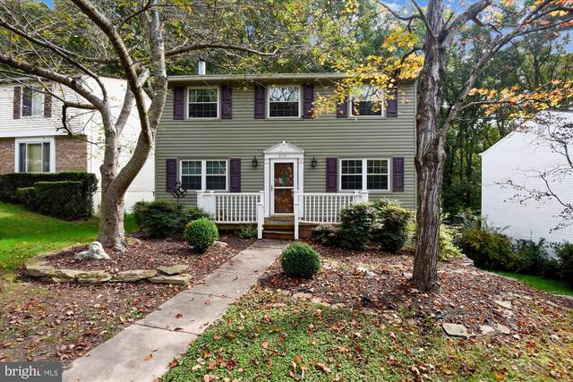 8135 Winter Blue Court, SPRINGFIELD, VA 22153 (#VAFX1155788) :: Certificate Homes