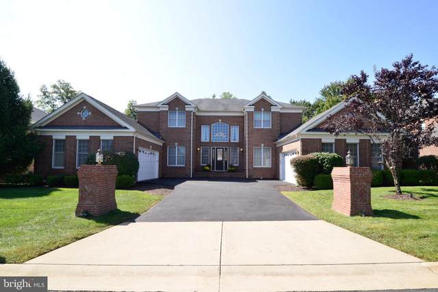 20137 Black Diamond Place, ASHBURN, VA 20147 (#VALO421580) :: Colgan Real Estate