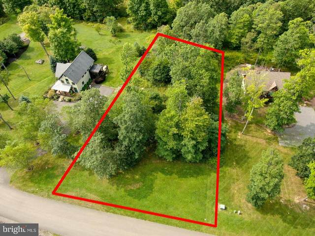 Lot 2 Golden Meadow Ln, MC HENRY, MD 21541 (#MDGA133576) :: SURE Sales Group